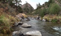 Red River Fly Fishing